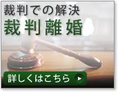 判決での解決 裁判離婚